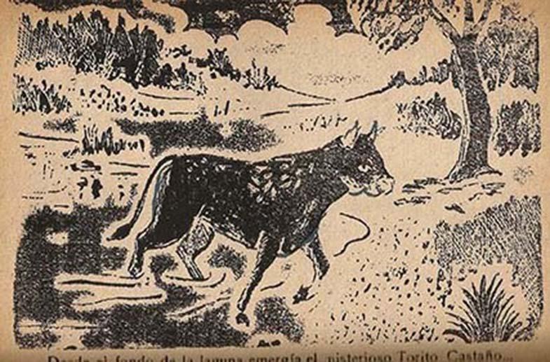 Encanto del toro castaño