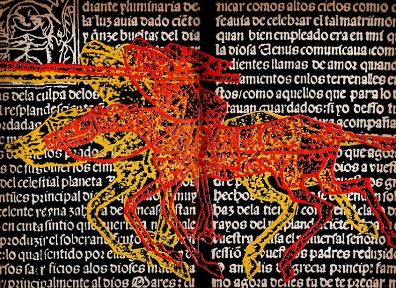 Don Quijote de la Mancha . Roberto Páez