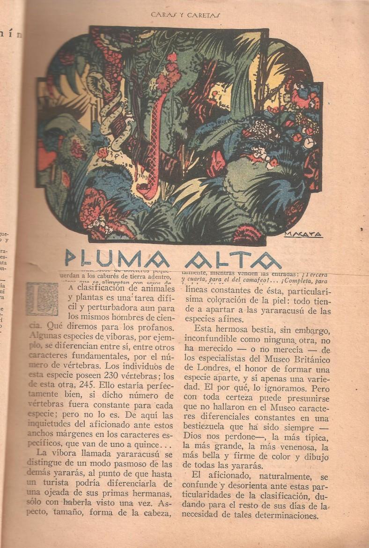 Ilustración realizada por Macaya