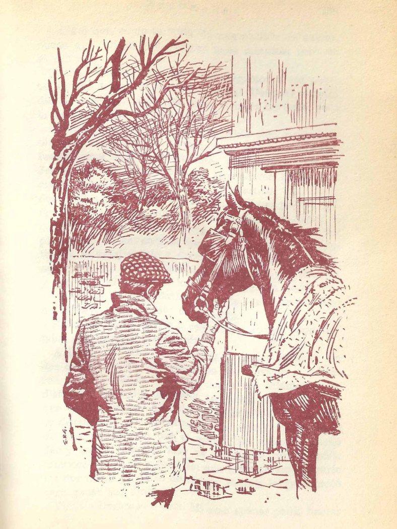 Última ilustración