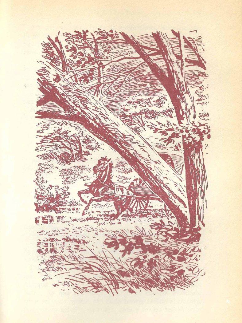 Segunda ilustración