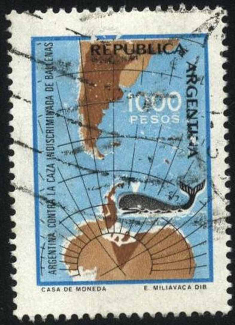 Contra la caza indiscriminada de ballenas, Argentina
