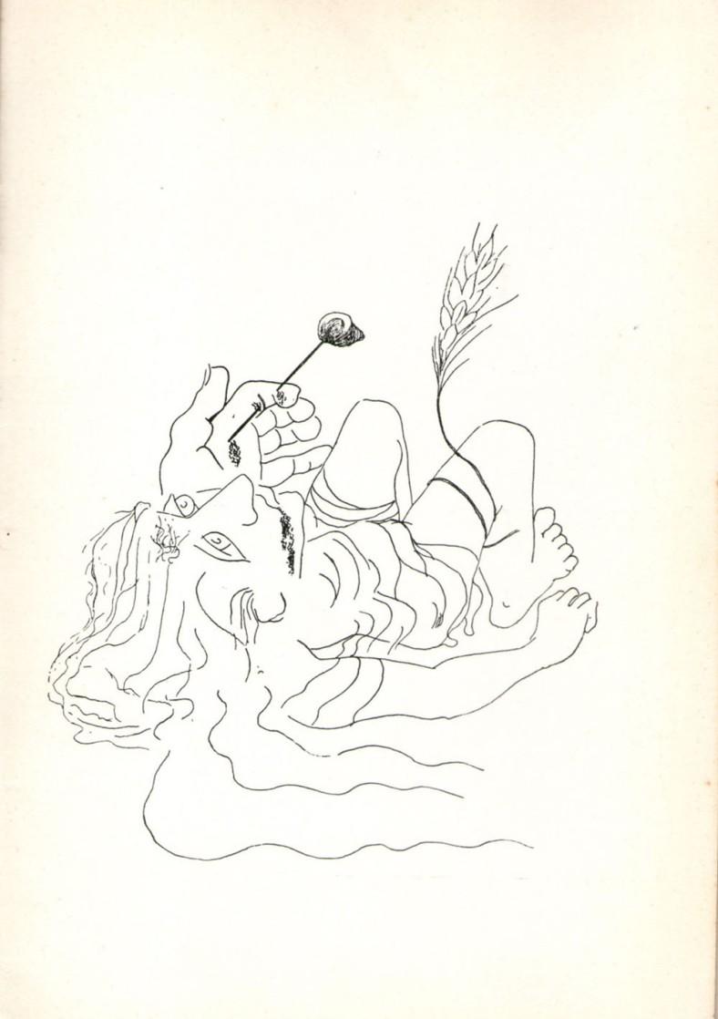 ilustraciongambartes11