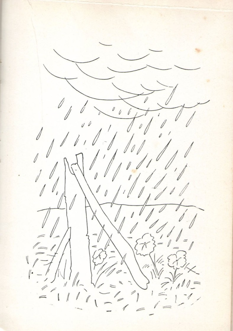 ilustraciongambartes12
