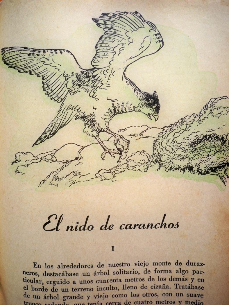 alfarero_-aristedes30