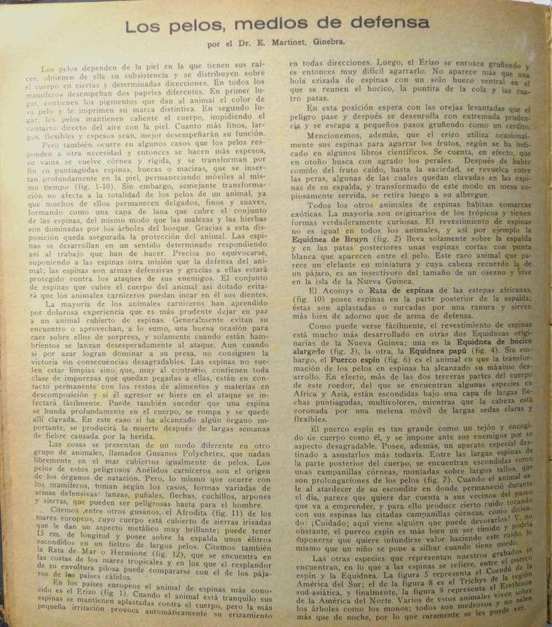 Página de Lectura