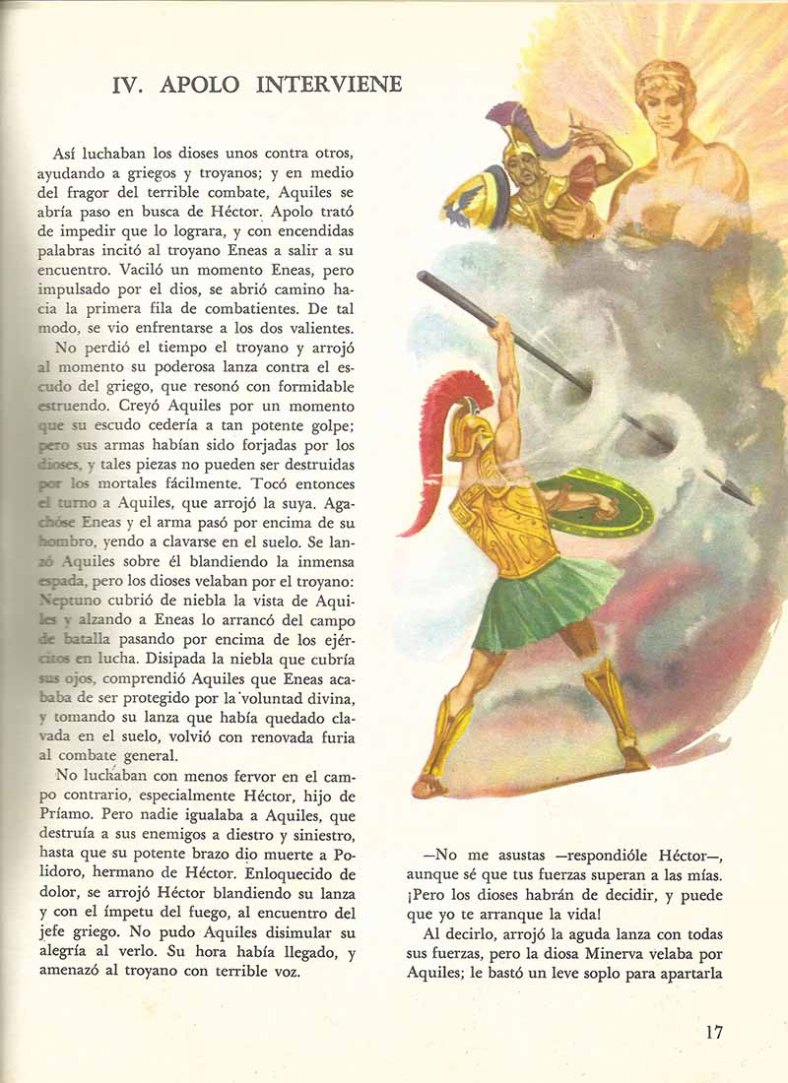 Página 17.