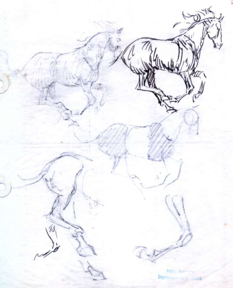 Angel Borisoff - Correccion ejercicio caballo