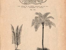 295 p.